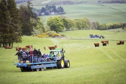 Scotland's Beef Event 2015
